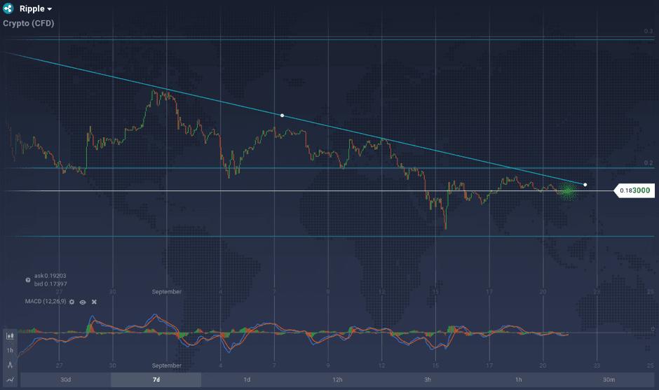 Hourly XRP/ USD Price Chart