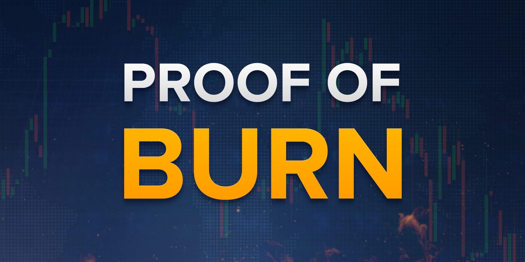 Đây là những gì bạn cần biết về Proof of Burn